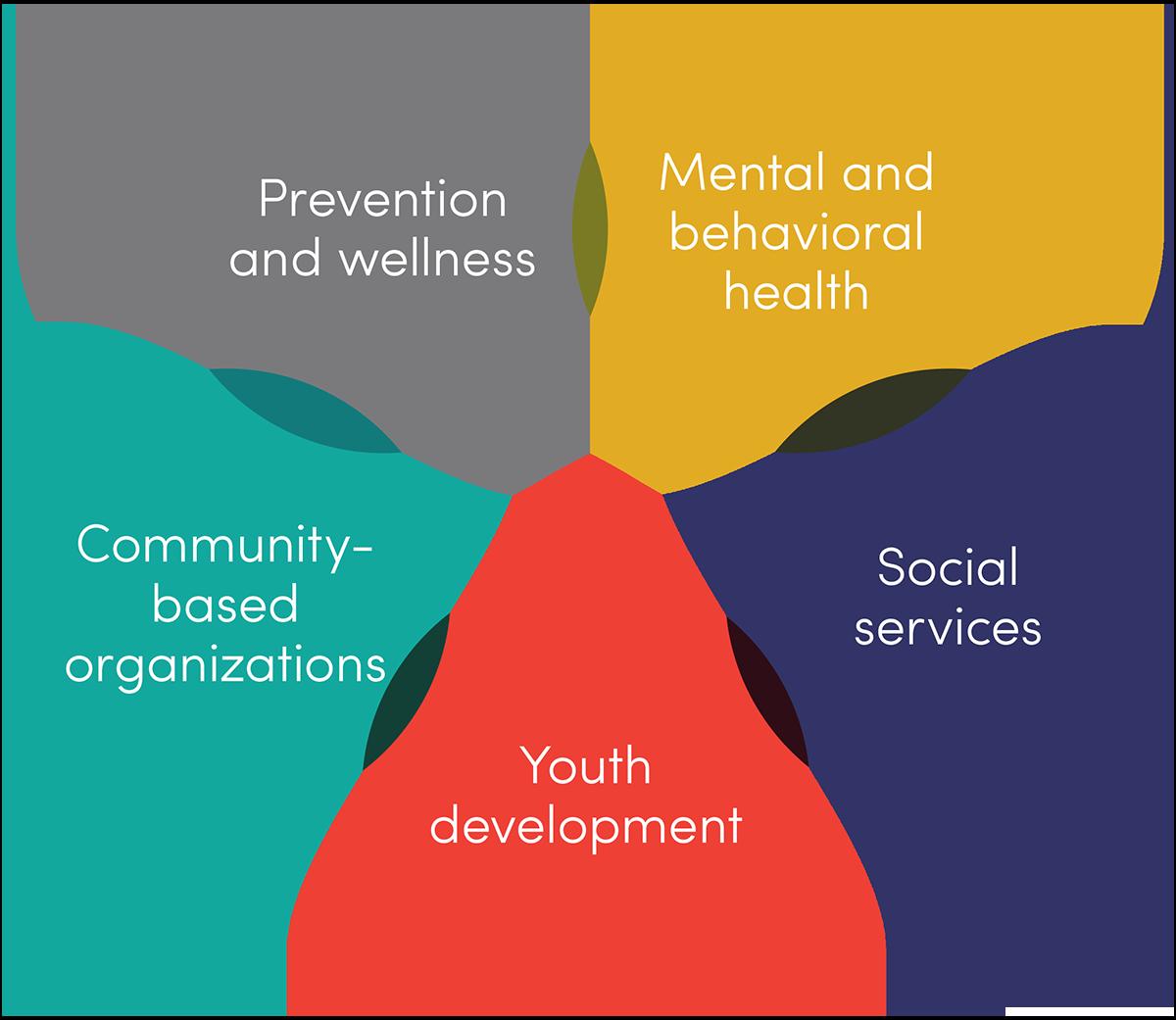 Prevention & Wellness, Mental & behavioral health, Social Services, Youth development, Community based organizations